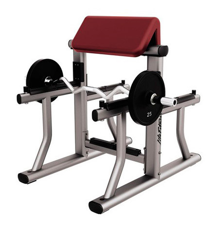 Arm_Curl_Bench