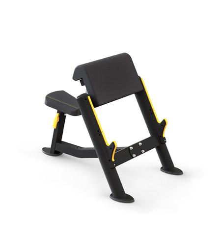 ptt0206-banco-biceps